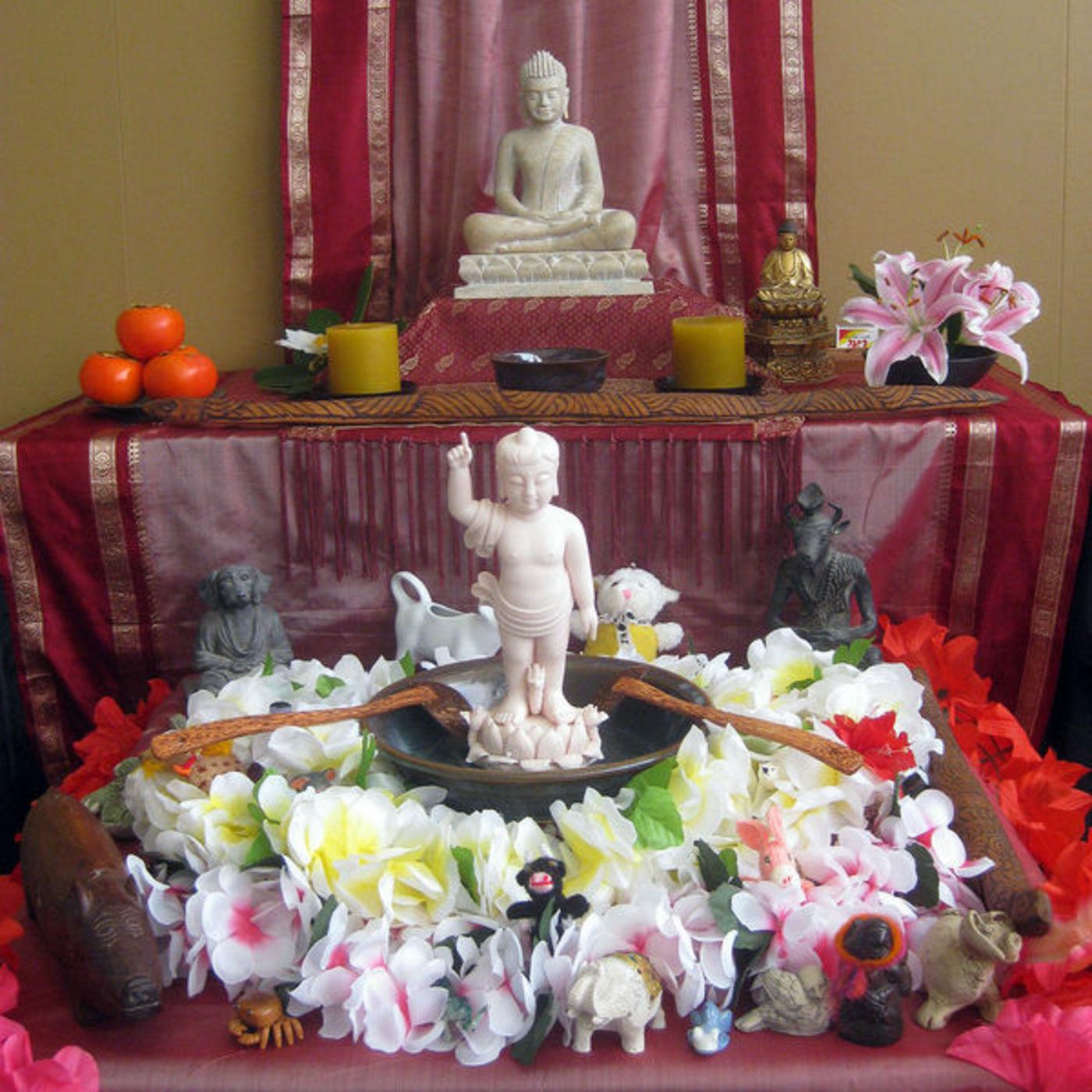 <![CDATA[Auckland Zen Centre: Suggestions for Beginners]]>